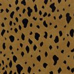 Animal Print Carpet Buy Animal Print Carpet At Discount