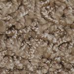 Frieze Carpet Coconut Grove