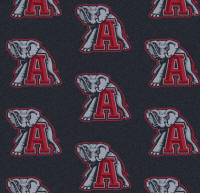 College Area Rugs